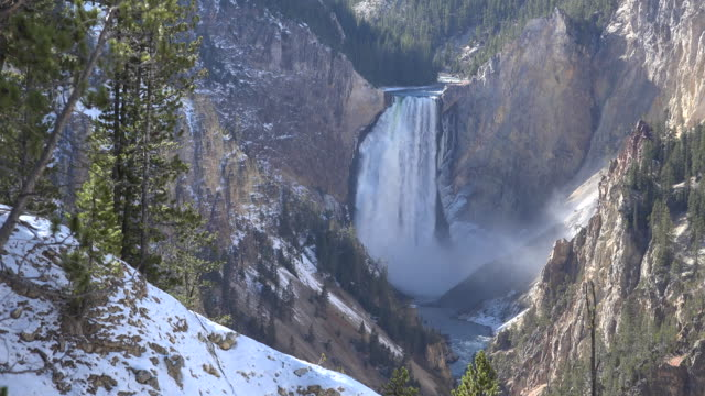 yellowstone view of lower falls in shadow - kieferngewächse stock-videos und b-roll-filmmaterial