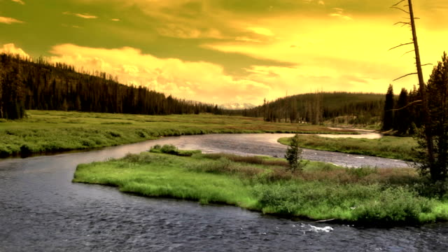 yellowstone vista - montana video stock e b–roll