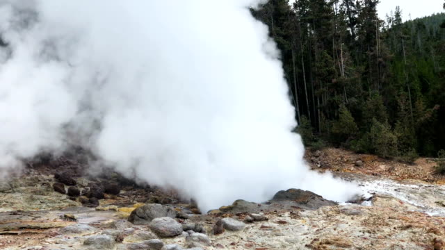 yellowstone's steamboat geyser erupts for the eighth time in 2018 on august 22 2018 in west yellowstone montana steamboat is the tallest active... - geyser stock videos & royalty-free footage