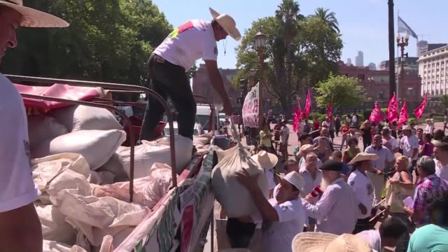 Yerba mate producers from the province of Misiones in Argentina's northeast head to the Plaza de Mayo on Thursday to protest the low price they are...