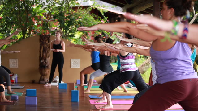 a yoga class of women on colorful yoga mats and an outdoor yoga studio practising yoga postures in unison surrounded by lush green vegetation. - kelly mason videos stock videos & royalty-free footage