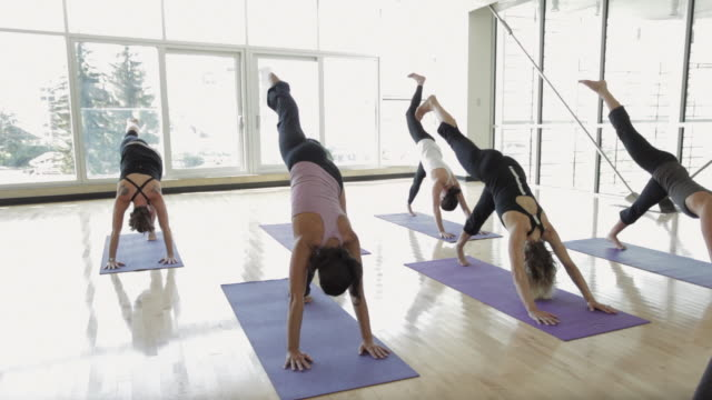 ms ds yoga students practicing yoga in yoga studio / vancouver, british columbia, canada - yoga video stock e b–roll
