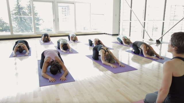 WS PAN Yoga students practicing yoga in yoga studio / Vancouver, British Columbia, Canada