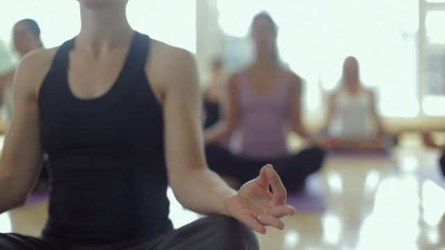 ms tu r/f yoga students practicing yoga in yoga studio / vancouver, british columbia, canada - yoga stock videos & royalty-free footage