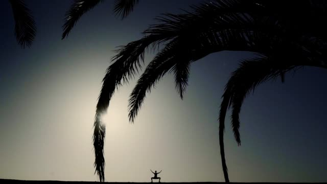 Yoga under palm tree. Distant silhouette