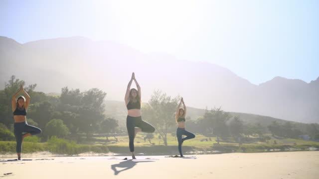 vídeos y material grabado en eventos de stock de yoga con amigos es lo mejor - vriksha asana