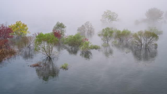 stockvideo's en b-roll-footage met yongdamho lake in wet fog / jinan-gun, jeollabuk-do, south korea - plate met stilstaande achtergrond