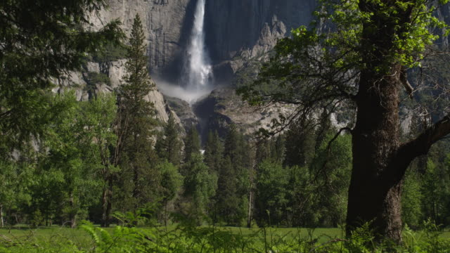 Yosemite Falls crashes over a cliff in Yosemite National Park.