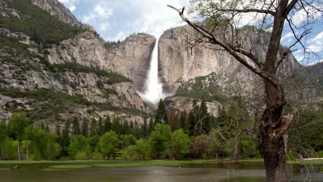 yosemite falls under våren runoffs. - yosemite nationalpark bildbanksvideor och videomaterial från bakom kulisserna
