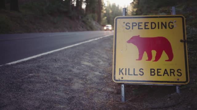 vídeos de stock, filmes e b-roll de parque nacional de yosemite, na califórnia - sinais de cruzamento