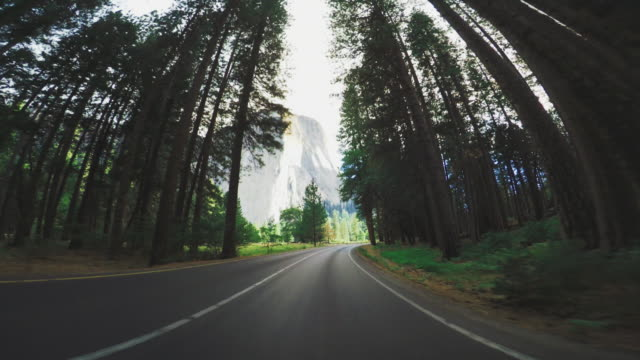 yosemite national park, kalifornien - yosemite national park stock-videos und b-roll-filmmaterial