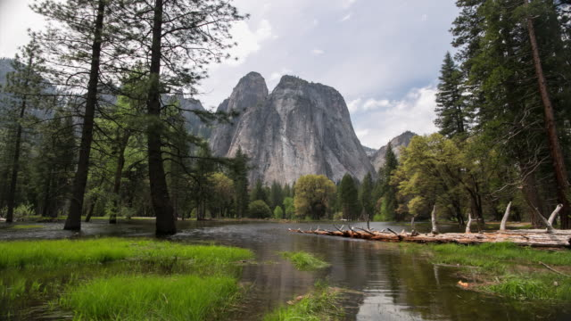 yosemite national park - natural parkland stock videos & royalty-free footage
