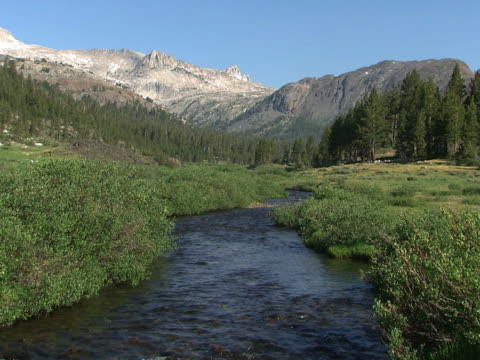 yosemite: stream, meadow and mountains - alm stock-videos und b-roll-filmmaterial