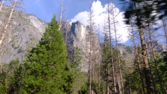 yosemite valley with el capitan, bridalveil fall and half dome from tunnel view, yosemite, california, usa. - エルキャピタン点の映像素材/bロール