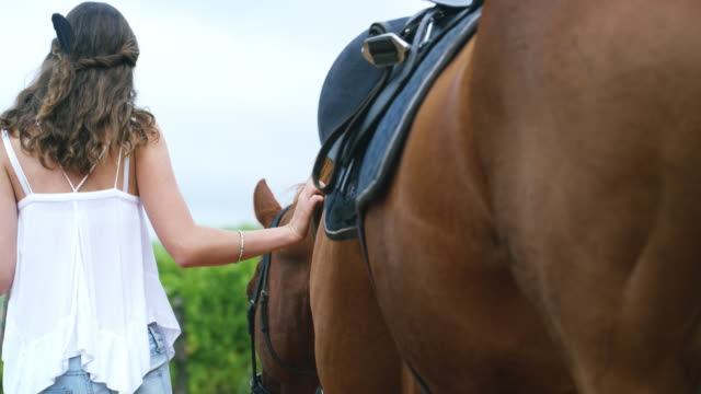 you can't tame her love for her horse - tame stock videos & royalty-free footage