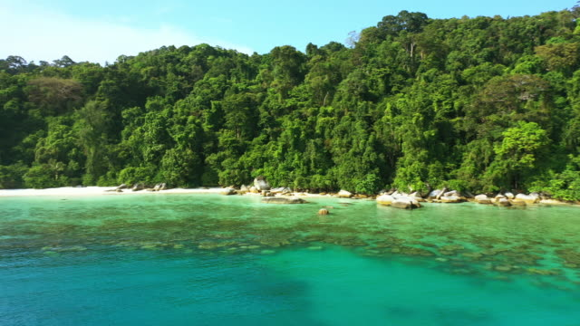 you'll find adventure along the coast or in the jungles - malaysia stock videos & royalty-free footage
