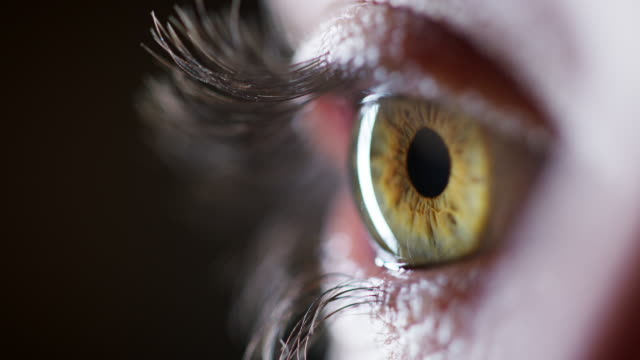 stockvideo's en b-roll-footage met je vindt een onverzettelijk bos in haar ogen - netvlies