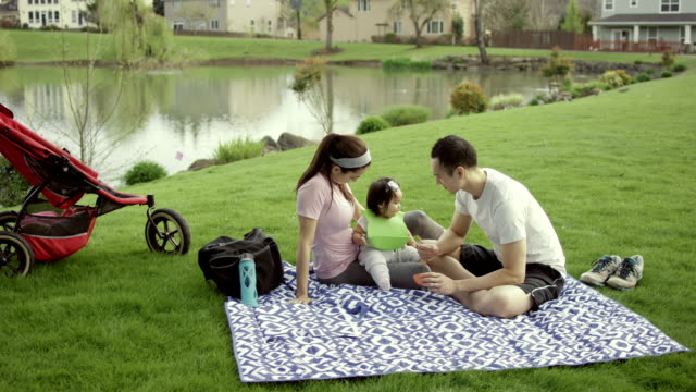 young adult family eating in park - three wheeled pushchair stock videos & royalty-free footage