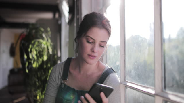 vidéos et rushes de young adult female checking smartphone in morning sunshine - regarder par la fenêtre