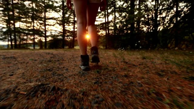 Jeune adulte femme randonneur randonnée vers une prairie