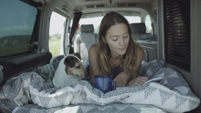 young adult female on road trip inside campervan reading book and playing with dog in bed - domestic animals stock videos & royalty-free footage