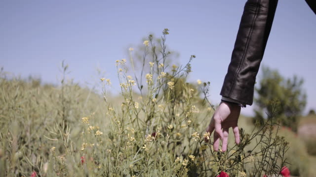 young adult woman touching flowers in field - leather jacket stock videos & royalty-free footage