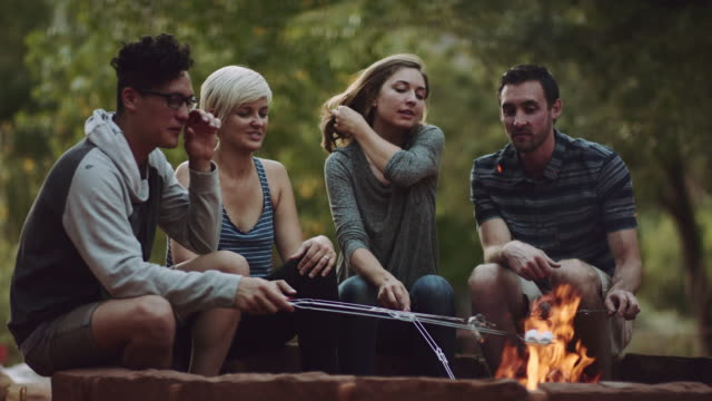 4K UHD: Young Adults Around a Campfire