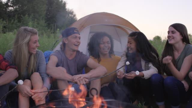 junge erwachsene haben ein lagerfeuer - camping stock-videos und b-roll-filmmaterial