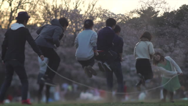 young adults jump rope in yoyogi park - tokyo, japan - picnic stock videos & royalty-free footage