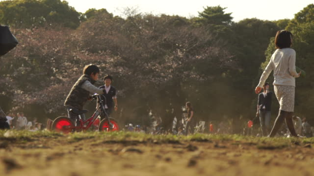 young adults play in yoyogi park - tokyo, japan - natural parkland stock videos & royalty-free footage