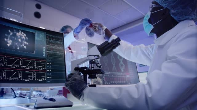 vídeos de stock, filmes e b-roll de microbiologista de etnia africana jovem estudando coronavírus - laboratório