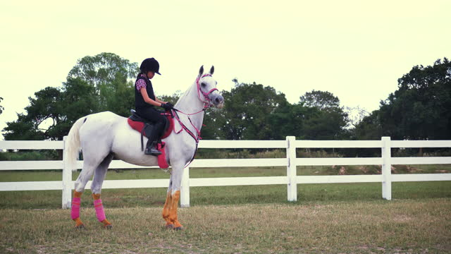 若いアジアの女の子は農場で馬に乗って楽しみます, 牧場での女の子乗馬訓練, 彼女はタイで白い色のアラビア馬に乗って - 外乗点の映像素材/bロール