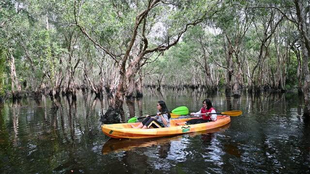 young asian girl kayaking in mangrove forests. - kryssa bildbanksvideor och videomaterial från bakom kulisserna