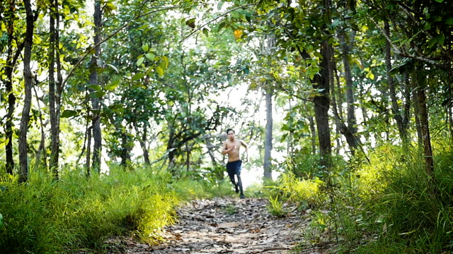 Young Asian man running on a trail running track at forest trail, healthy lifestyle and fitness sport concept