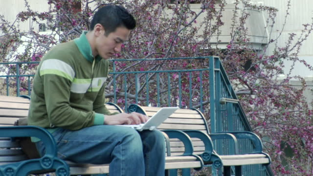 ms young asian man sitting on a bench and typing on his laptop / los angeles, california, united states - bench stock videos & royalty-free footage