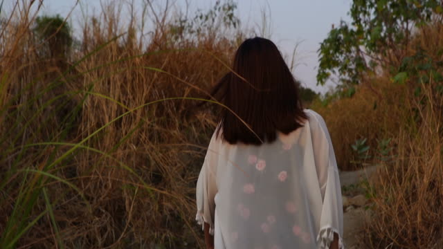 young asian tourist woman walking alone in overgrown dried plant , extreme terrain scene - missing people stock videos & royalty-free footage