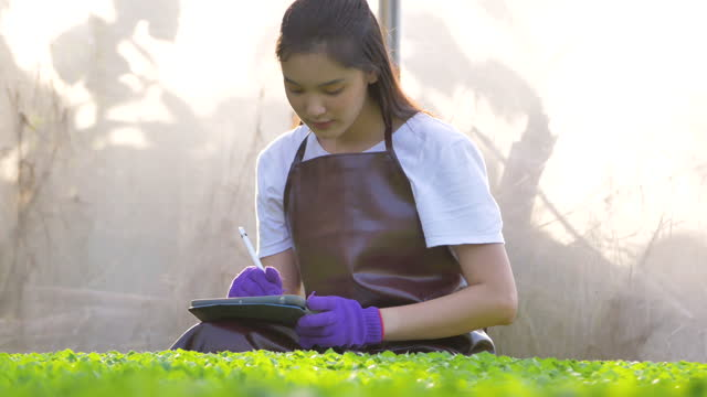 young asian woman farmer using digital tablet for checking plants in greenhouse - footwear stock videos & royalty-free footage