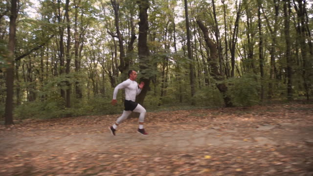 young athlete running through the forest - cardiovascular exercise stock videos & royalty-free footage