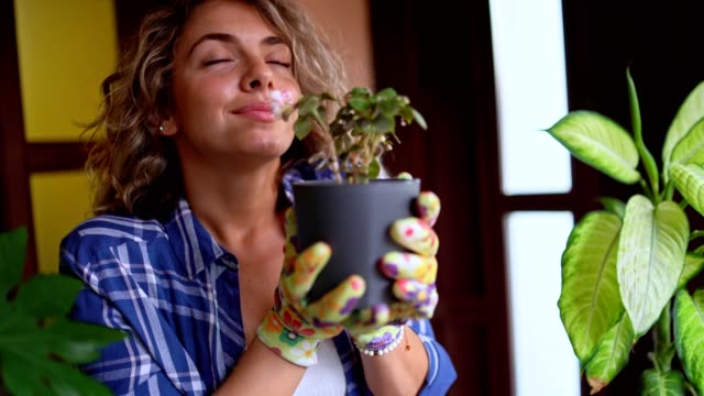 young attractive woman is smelling her flower - plant pot stock videos & royalty-free footage