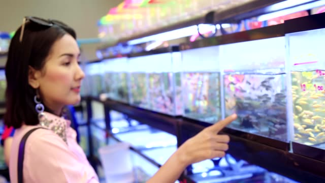 young beautiful asian woman looking and interesting observing small fish in tank at the pet shop. - petshop stock videos and b-roll footage