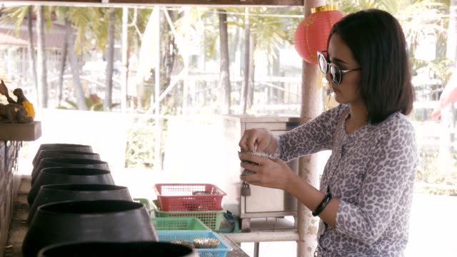 young beautiful asian woman put the coin in monk bowl to donate money making a merit. - donation box stock videos & royalty-free footage