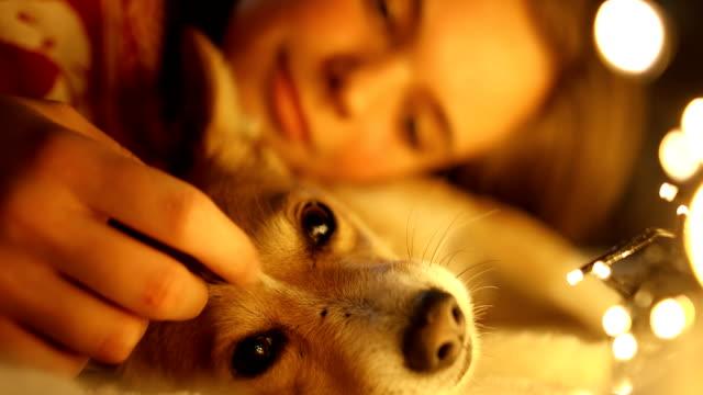 vidéos et rushes de jeune belle fille appréciant avec son crabot dans une atmosphère confortable de noel. jouer avec le chien sur une veille du nouvel an - chiot