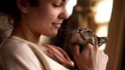 A young, beautiful girl is playing with a gentle, gray cat. He scratching his ears, caresses . Happy. Indoor