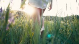 Young beautiful woman in sneakers and shorts walking on meadow with green grass nature slow motion video. Girl in the field legs at sunset close-up on the grass sunlight lifestyle silhouette
