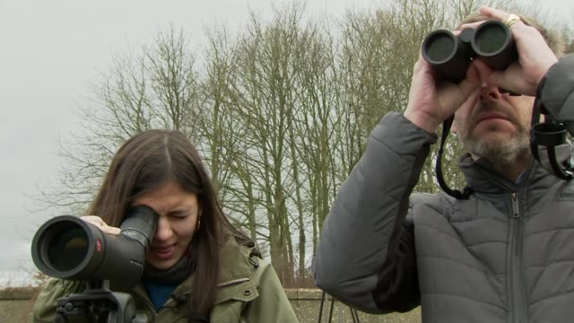 young bird watcher to receive honorary doctorate england somerset ext young bird watcher myarose craig who will become the second youngest person to... - diploma stock videos & royalty-free footage