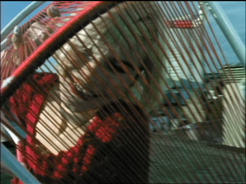 vídeos de stock, filmes e b-roll de young blonde woman standing on building rooftop looking at camera through chair - 1990 1999