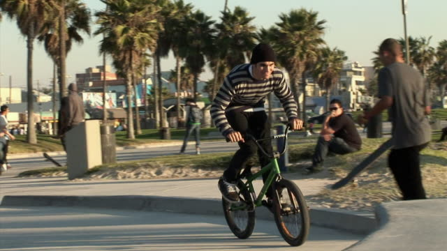 ms, young bmx biker riding on ramp in park, venice, california, usa - fan palm tree stock videos & royalty-free footage