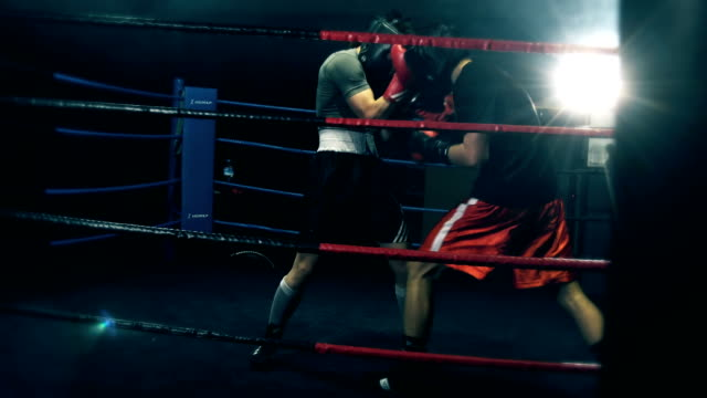 young boxers fighting on box ring - ring stock videos & royalty-free footage