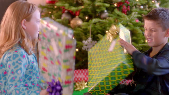 young boy and girl inspect presents, trade back and forth beneath christmas tree (dolly-shot) - christmas gift stock videos and b-roll footage