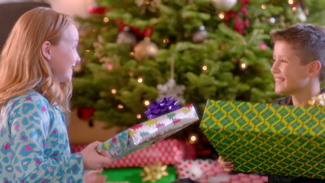 Young boy and girl trade presents under Christmas tree